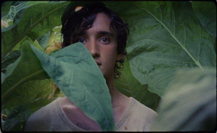 Кадр из фильма Счастлив, как Лаззаро