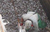 СБУ затримала за браконьєрство два судна в Азовському морі