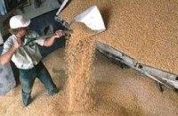 На внутреннем рынке Украины выросли цены на зерно