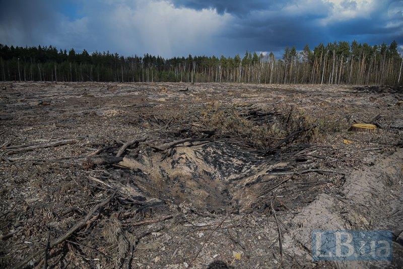 Залишки спалених решток вирубки. Це - порушення на ділянці.