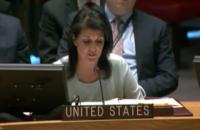 Войска США не уйдут из Сирии, пока не решат поставленных задач, - Хейли
