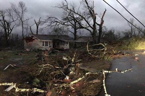 В США 15 человек погибли в результате торнадо