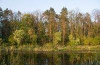 Київрада звернулася до правоохоронців через Біличанський ліс