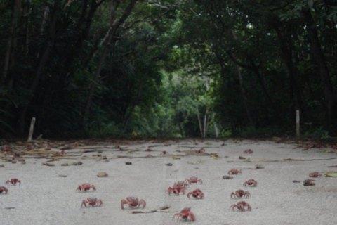 Это не гид: шесть фильмов фестиваля Docudays UA