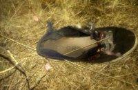Под Артемовском двое детей подорвались на мине