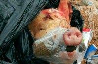 На зупинці в Запоріжжі залишили свинячу голову з муляжем гранати