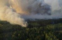 В Чернобыльской зоне возник пожар