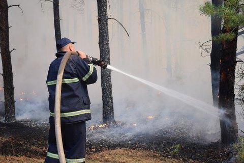 У Житомирській області вогонь охопив 60 гектарів лісу
