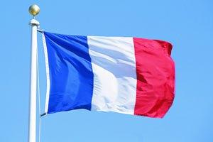 Франция призывает защитить права человека в Украине