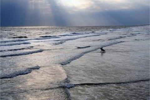 Європарламент оголосив надзвичайну кліматичну ситуацію