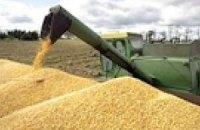 Кабмин в сентябре компенсирует зернотрейдерам НДС на 1 млрд грн