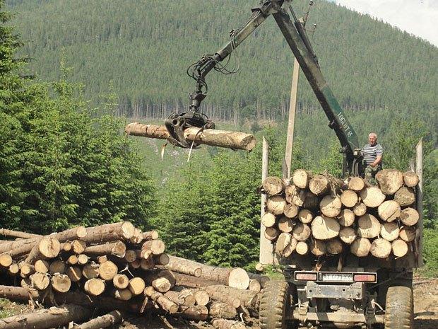 Лісозаготівля, Довбушанка, Карпати