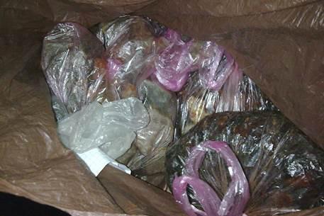 В Ровенской области изъяли янтаря почти на два миллиона гривен