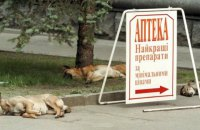Спека в Києві побила 75-річний рекорд