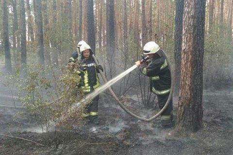 У Києві біля Троєщини загорівся ліс