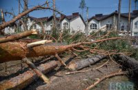 Мовчання дерев. Чи марна смерть Гостомельського лісу
