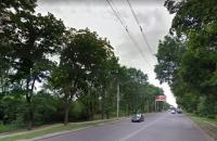 В Харькове дерево упало на рабочих, три человека получили травмы