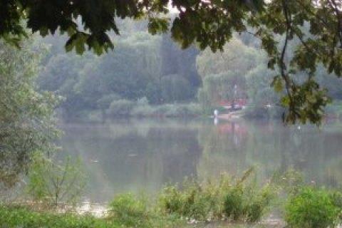 У Рівненській області батько й син потрапили у коловорот і потонули