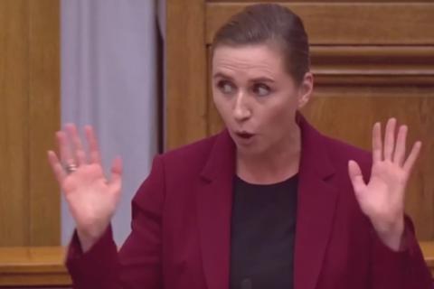 Прем'єр-міністр Данії розсмішила парламент розповіддю про дружбу слона і верблюда