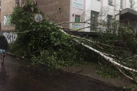 Негода дісталась Рівного, очевидці повідомляють про падіння дерев на автомобілі