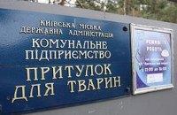 Киевское руководство вновь готовится кормить киевлян псиной