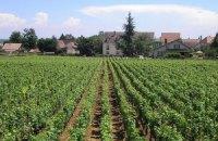 Украинцев заподозрили в отмывании денег через французские виноградники