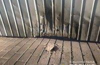 Радника Семеніхіна затримали за підрив гранати у дворі конотопського депутата