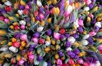 В Харькове обокрали цветочный киоск
