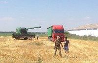 В Николаевской области вооруженные люди пришли косить пшеницу на чужое поле