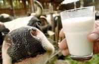 Мінагрополітики не вводило обмежень на прийом молока у громадян з початку 2018