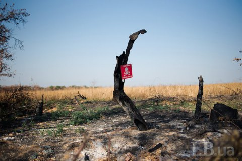 У Луганській області мати із сином підірвалися на вибухівці, - ОБСЄ