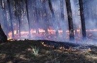 На Виннитчине горел лес