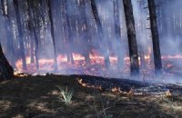 Украинцев предупреждают о пожарной опасности