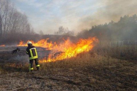 С начала года в Украине произошло более 9 тыс. возгораний травы, мусора и кустарников