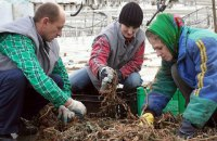 43% українських заробітчан, які повернулися із заробітків, не планують знову виїжджати за кордон, - ЗМІ