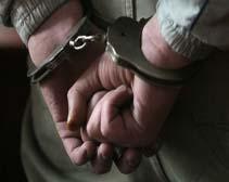 Днепропетровские милиционеры поймали «рождественского» вора