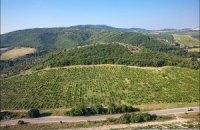 В Крыму заложат 15 гектаров новых виноградников