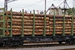 Кабмин снизил тариф на перевозку лесоматериалов железной дорогой