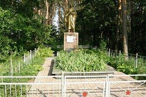 Стройка на могиле неизвестного солдата в Ирпене началась
