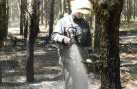 В Херсонской области возник лесной пожар