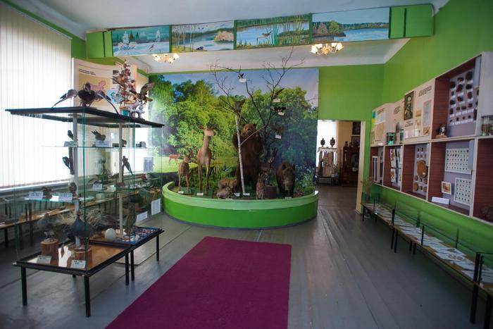 Експозиція природи Волноваського краєзнавчого музею