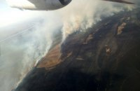 В Одесской области потушили крупный пожар в Вилковском лесничестве (обновлено)