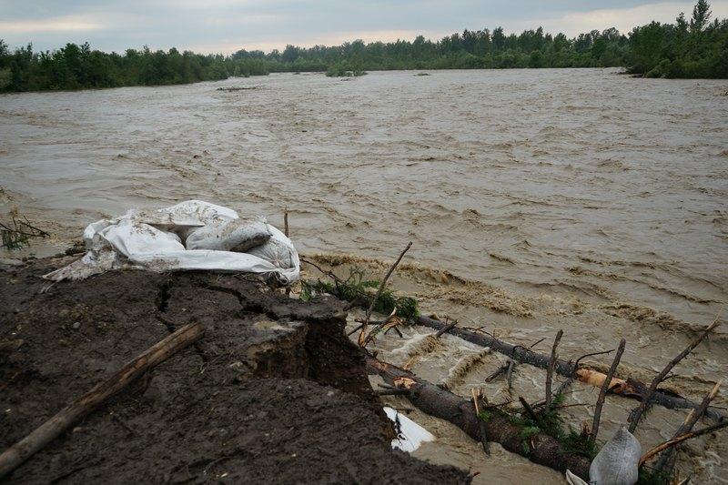 Паводок на притоке Прута Черемоше