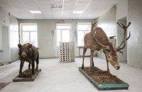 На лінії вогню: як живе музей у Станиці Луганській