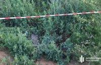 У ДБР розповіли деталі затримання співробітників СБУ за напад на прикордонників на Сумщині