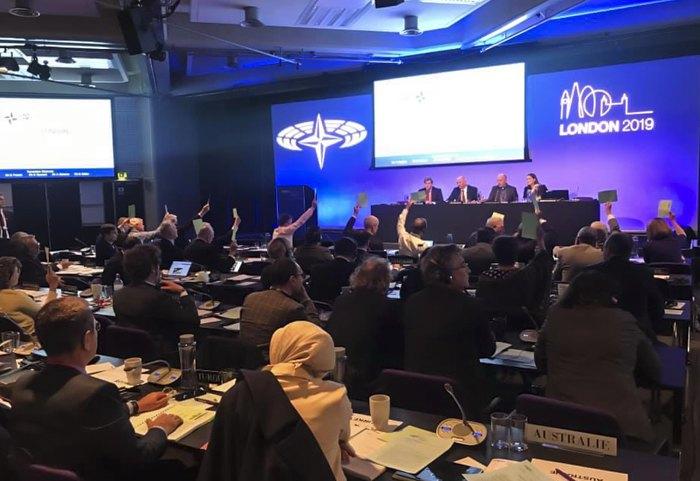 Голосование в поддержку Украины после доклада украинской делегации на Парламентской ассамблее НАТО о применении экономических санкций против стран-агрессоров, Лондон, 12 октября 2019