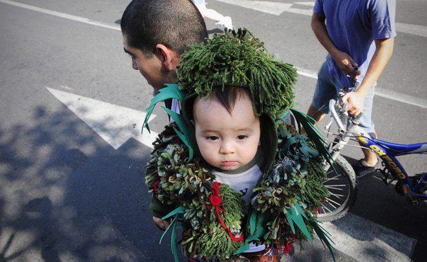Мальчик-шишка, тоже Чили, без комментариев