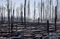 Пожежу в Чорнобильській зоні загасили, на ліквідацію тління потрібно ще кілька днів