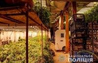 На Закарпатье полиция обнаружила две подземные плантации с элитной коноплей на 5 млн гривен