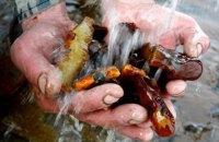 Кабмін ініціює розробку нового законопроекту з видобутку бурштину